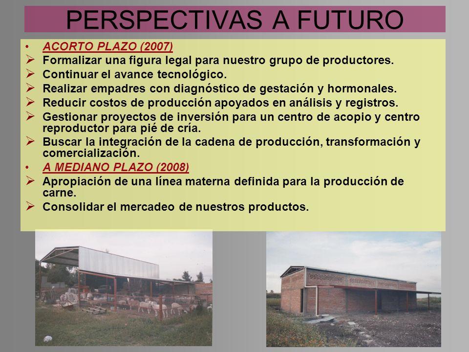 PERSPECTIVAS A FUTURO ACORTO PLAZO (2007)