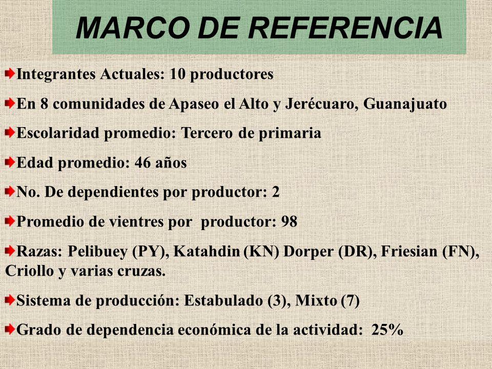 MARCO DE REFERENCIA Integrantes Actuales: 10 productores