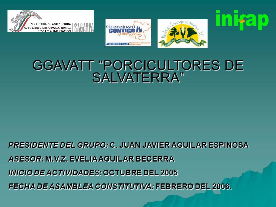 GGAVATT PORCICULTORES DE SALVATERRA