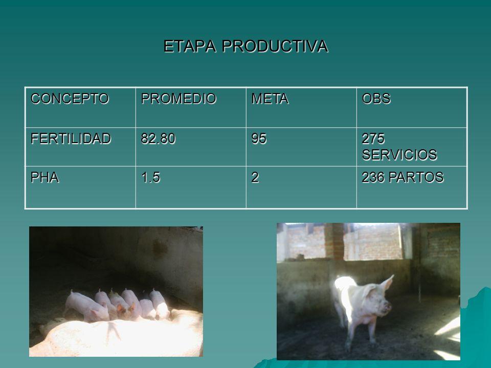 ETAPA PRODUCTIVA CONCEPTO PROMEDIO META OBS FERTILIDAD 82.80 95