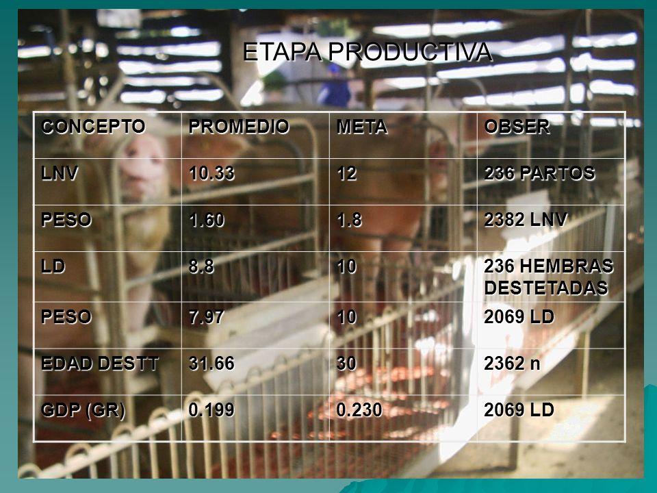 ETAPA PRODUCTIVA CONCEPTO PROMEDIO META OBSER LNV 10.33 12 236 PARTOS