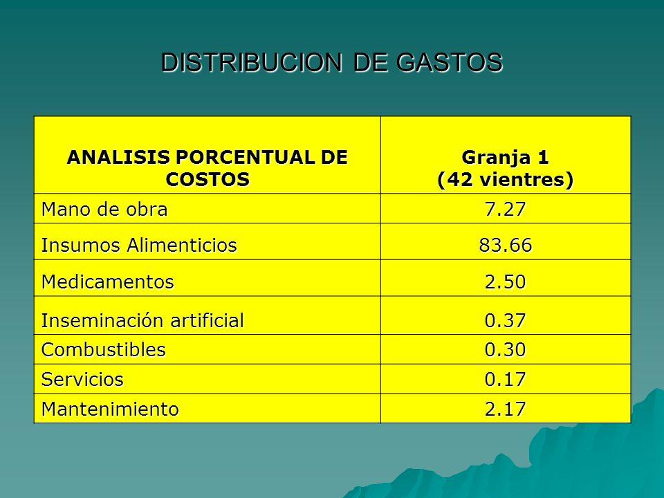 DISTRIBUCION DE GASTOS