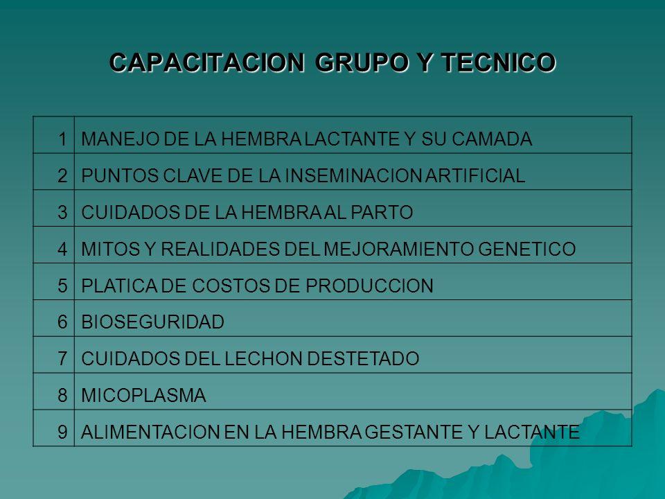 CAPACITACION GRUPO Y TECNICO