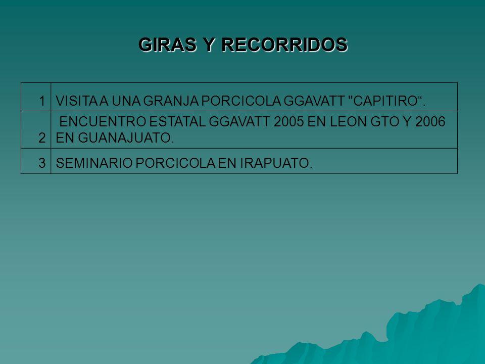 GIRAS Y RECORRIDOS 1 VISITA A UNA GRANJA PORCICOLA GGAVATT CAPITIRO .
