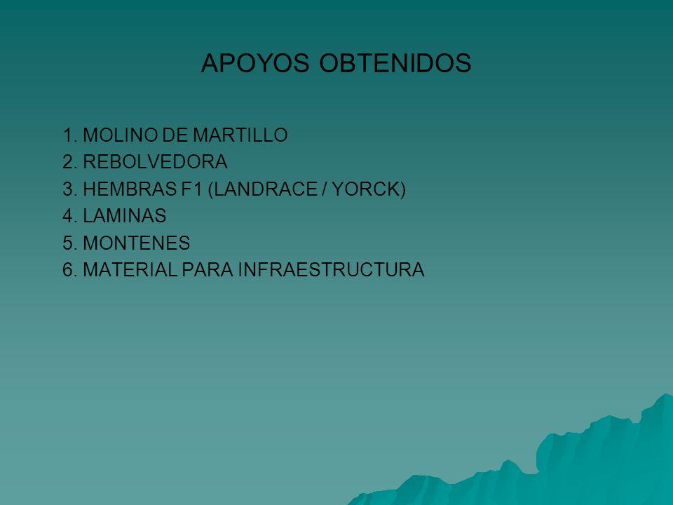 APOYOS OBTENIDOS 1. MOLINO DE MARTILLO 2. REBOLVEDORA