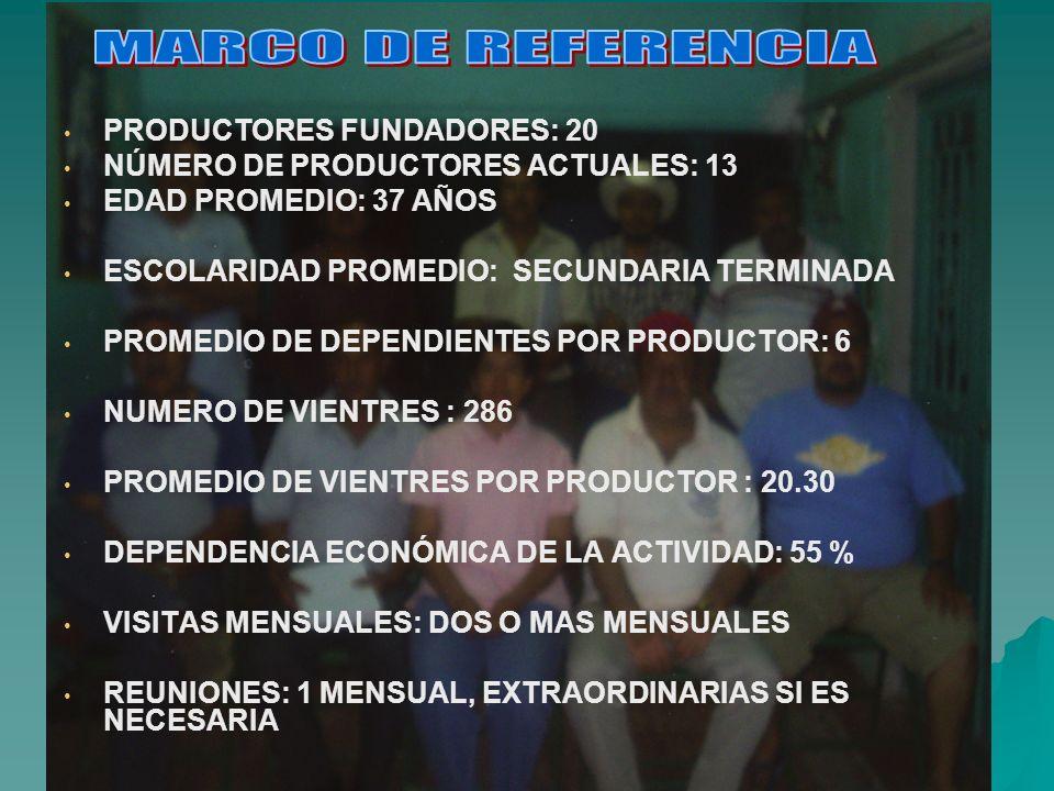 MARCO DE REFERENCIA PRODUCTORES FUNDADORES: 20