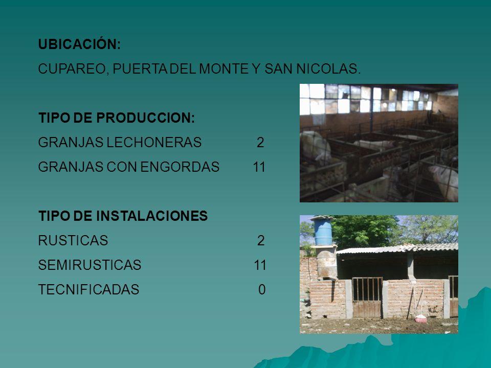 UBICACIÓN: CUPAREO, PUERTA DEL MONTE Y SAN NICOLAS. TIPO DE PRODUCCION: GRANJAS LECHONERAS 2.