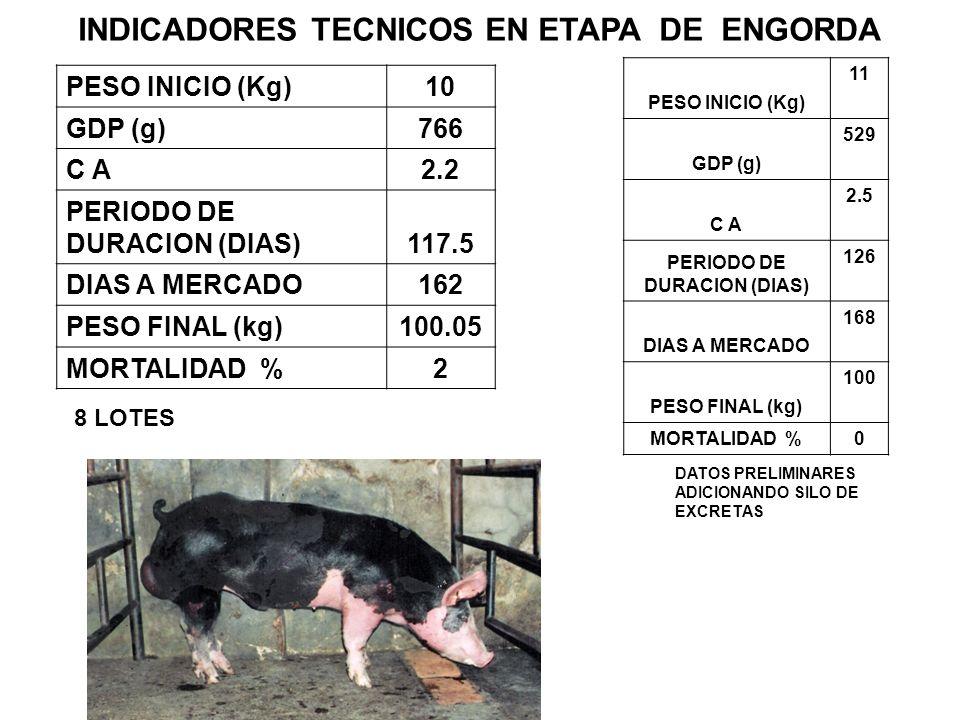 INDICADORES TECNICOS EN ETAPA DE ENGORDA PERIODO DE DURACION (DIAS)