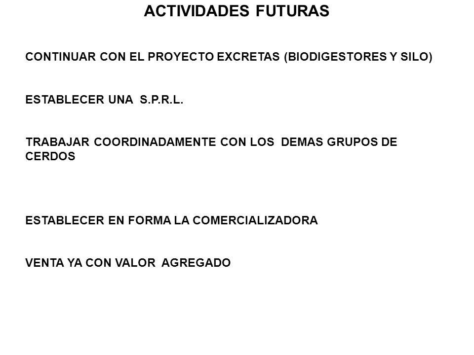 ACTIVIDADES FUTURAS CONTINUAR CON EL PROYECTO EXCRETAS (BIODIGESTORES Y SILO) ESTABLECER UNA S.P.R.L.