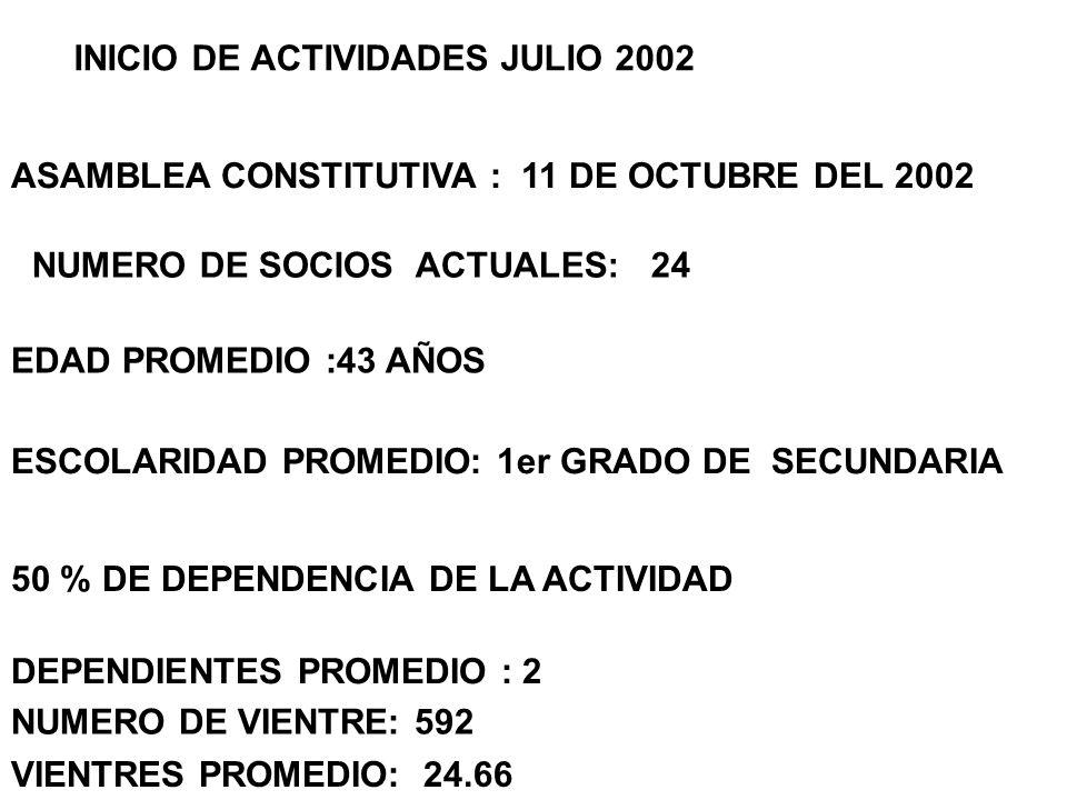 INICIO DE ACTIVIDADES JULIO 2002