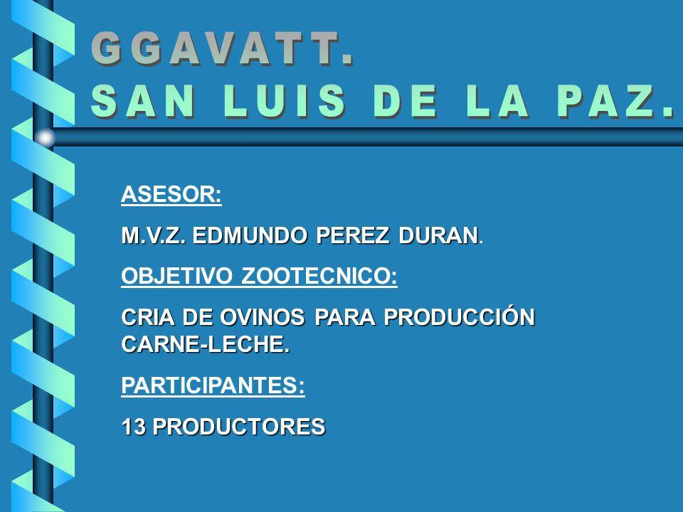 GGAVATT. SAN LUIS DE LA PAZ. ASESOR: M.V.Z. EDMUNDO PEREZ DURAN.