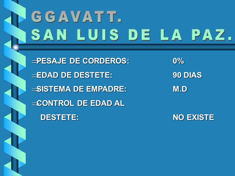 GGAVATT. SAN LUIS DE LA PAZ. PESAJE DE CORDEROS: 0%