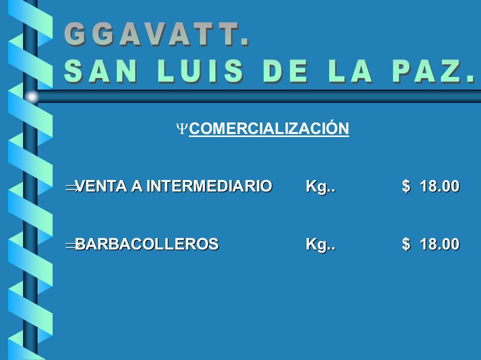GGAVATT. SAN LUIS DE LA PAZ. COMERCIALIZACIÓN