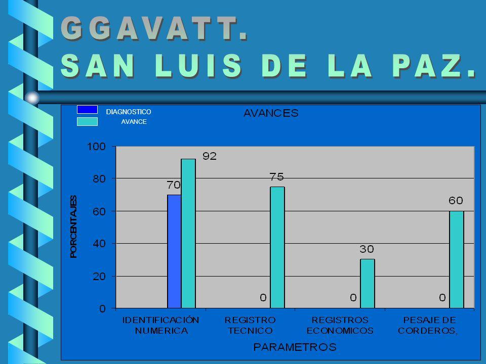 GGAVATT. SAN LUIS DE LA PAZ. DIAGNOSTICO AVANCE