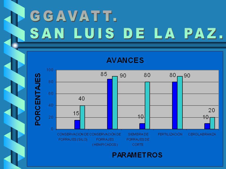 GGAVATT. SAN LUIS DE LA PAZ.