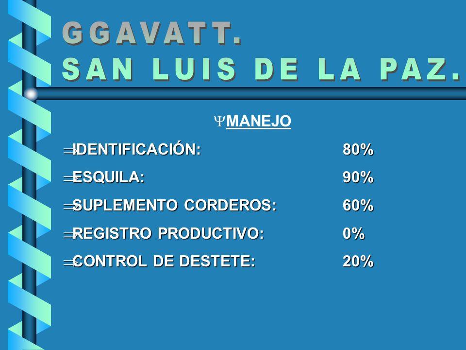 GGAVATT. SAN LUIS DE LA PAZ. MANEJO IDENTIFICACIÓN: 80% ESQUILA: 90%