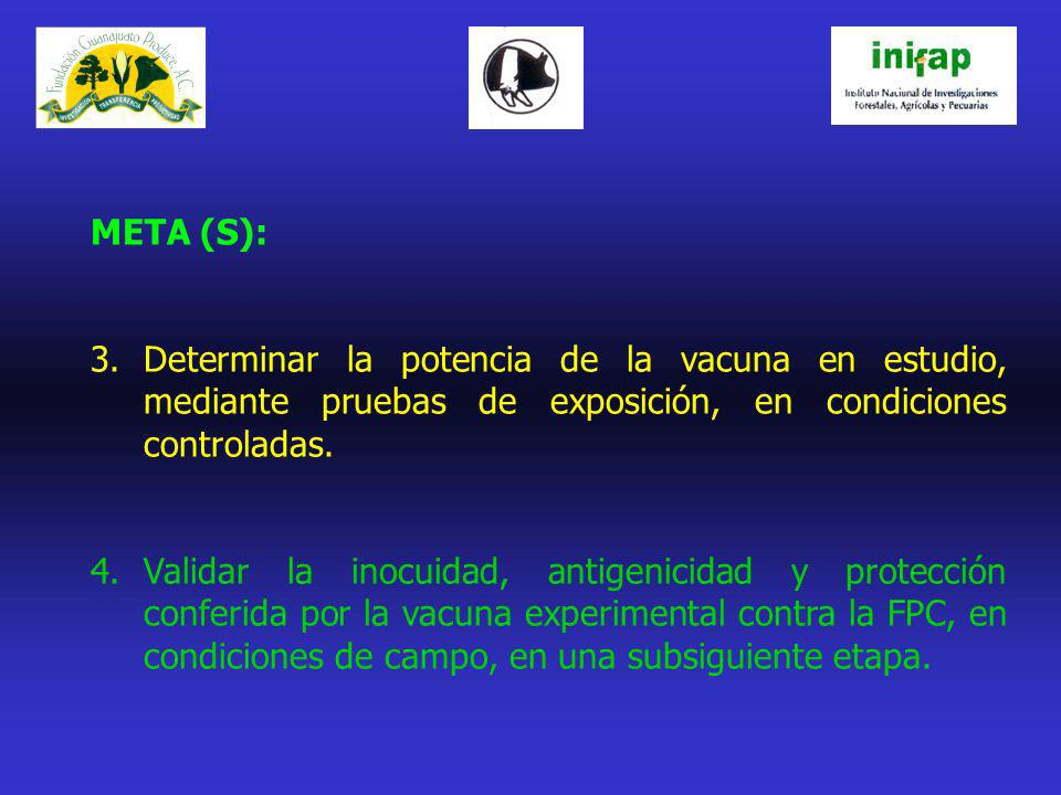 META (S): Determinar la potencia de la vacuna en estudio, mediante pruebas de exposición, en condiciones controladas.