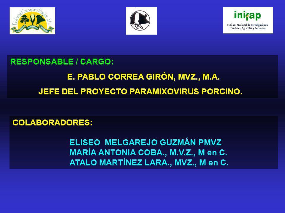 RESPONSABLE / CARGO: E. PABLO CORREA GIRÓN, MVZ., M.A. JEFE DEL PROYECTO PARAMIXOVIRUS PORCINO. COLABORADORES: