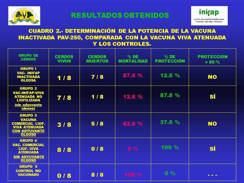 RESULTADOS OBTENIDOS 1 / 8 3 / 8 8 / 8