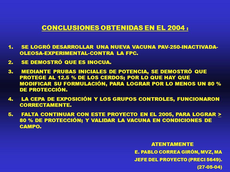 CONCLUSIONES OBTENIDAS EN EL 2004 :