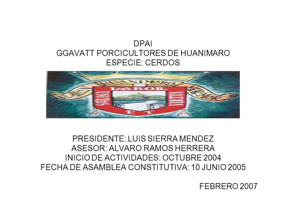 DPAI GGAVATT PORCICULTORES DE HUANIMARO ESPECIE: CERDOS PRESIDENTE: LUIS SIERRA MENDEZ ASESOR: ALVARO RAMOS HERRERA INICIO DE ACTIVIDADES: OCTUBRE 2004 FECHA DE ASAMBLEA CONSTITUTIVA: 10 JUNIO 2005 FEBRERO 2007