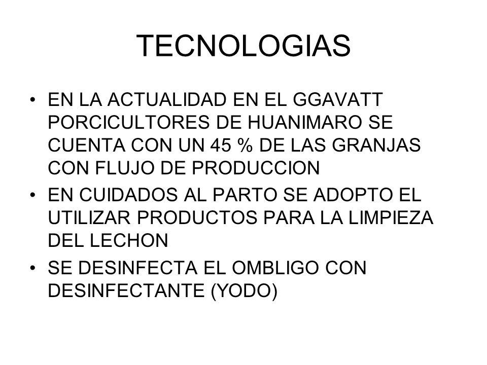 TECNOLOGIAS EN LA ACTUALIDAD EN EL GGAVATT PORCICULTORES DE HUANIMARO SE CUENTA CON UN 45 % DE LAS GRANJAS CON FLUJO DE PRODUCCION.