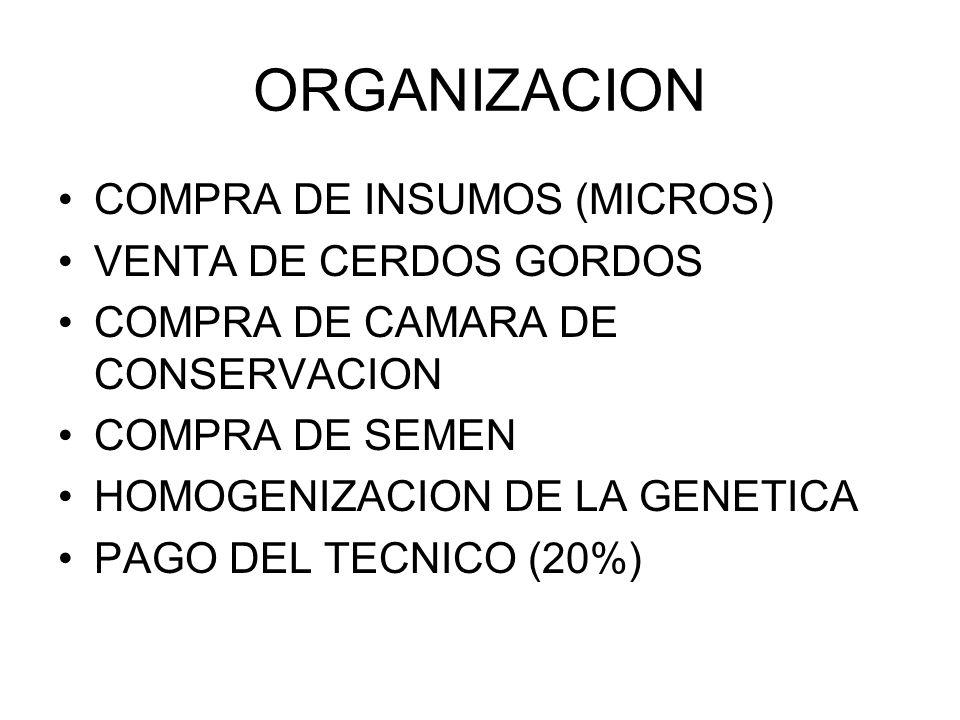 ORGANIZACION COMPRA DE INSUMOS (MICROS) VENTA DE CERDOS GORDOS