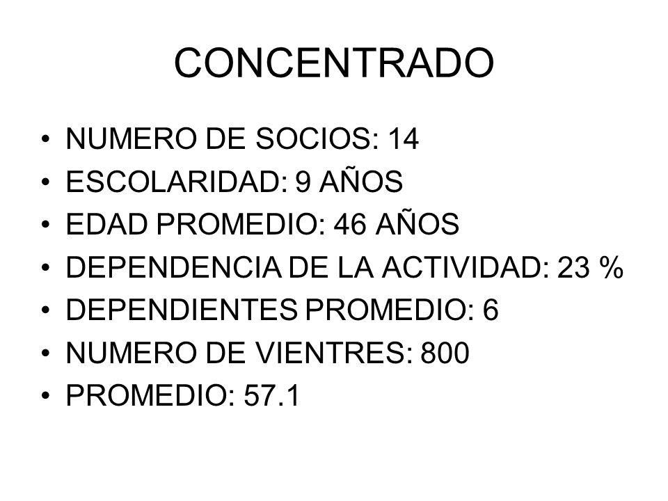 CONCENTRADO NUMERO DE SOCIOS: 14 ESCOLARIDAD: 9 AÑOS
