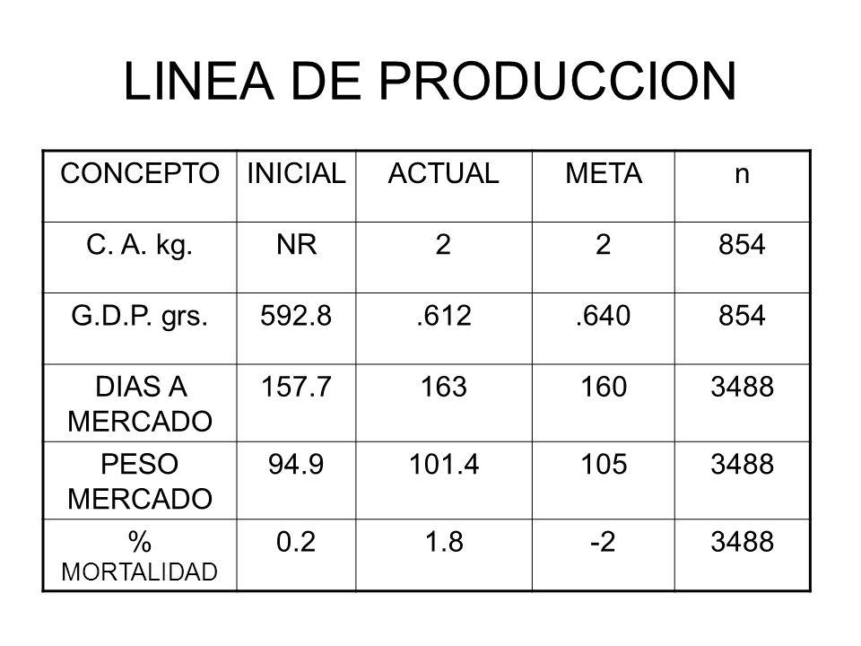 LINEA DE PRODUCCION CONCEPTO INICIAL ACTUAL META n C. A. kg. NR 2 854