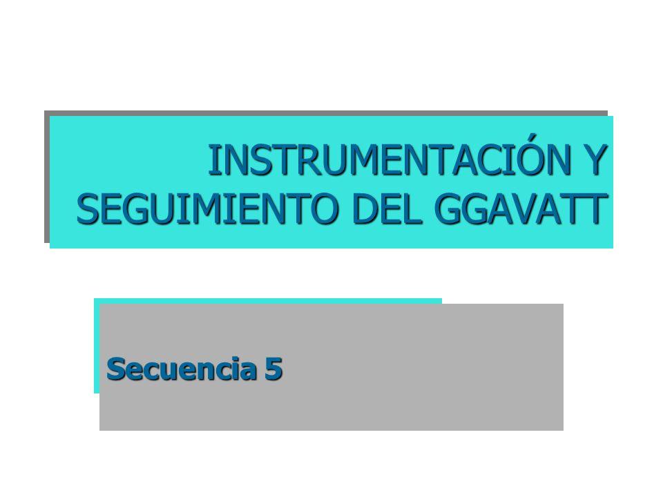 INSTRUMENTACIÓN Y SEGUIMIENTO DEL GGAVATT