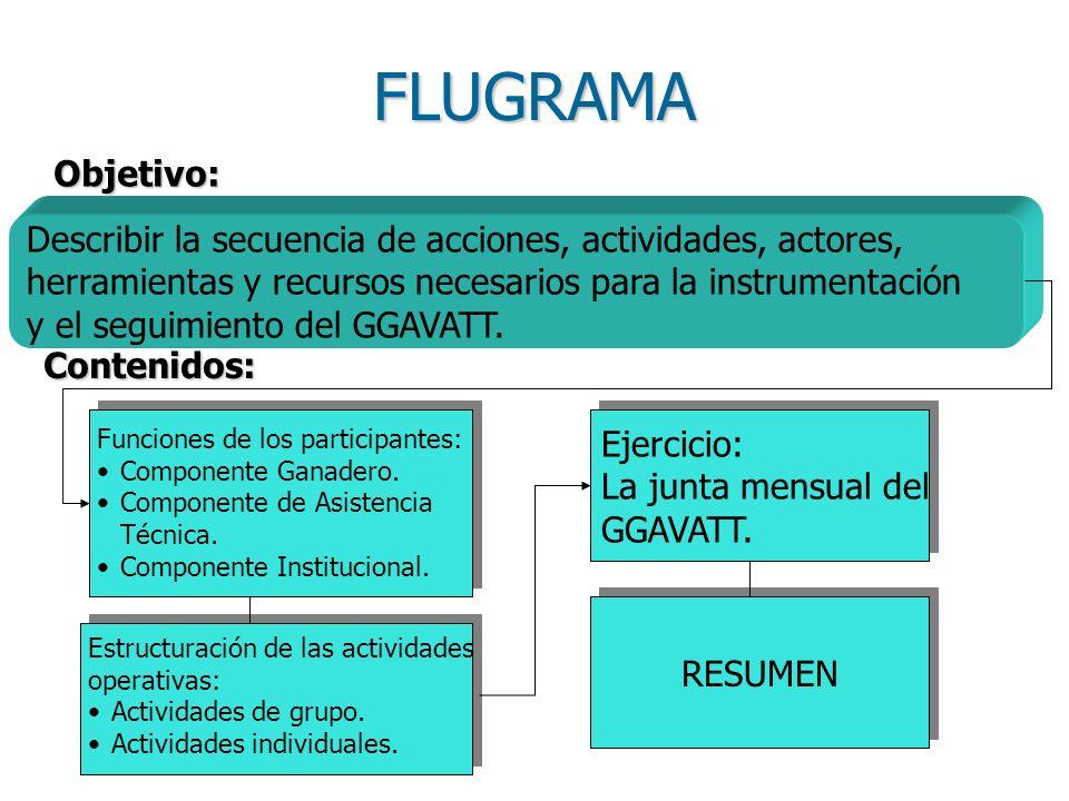 FLUGRAMA Objetivo: Describir la secuencia de acciones, actividades, actores, herramientas y recursos necesarios para la instrumentación.