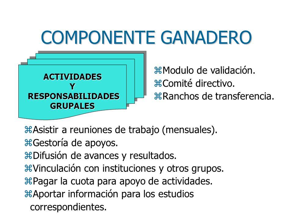COMPONENTE GANADERO Modulo de validación. Comité directivo.