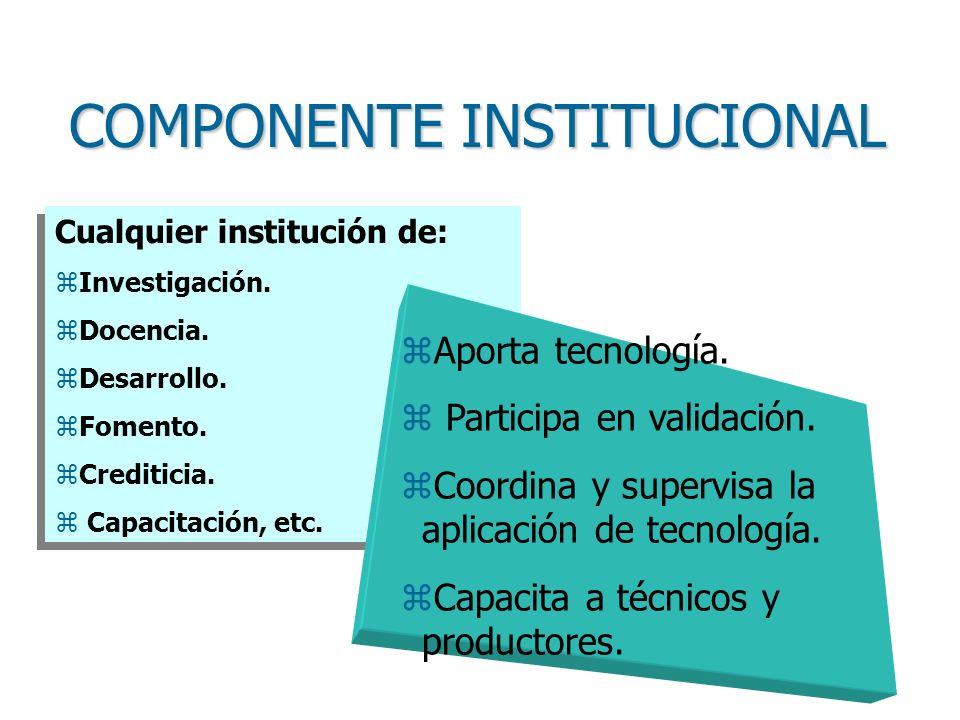 COMPONENTE INSTITUCIONAL