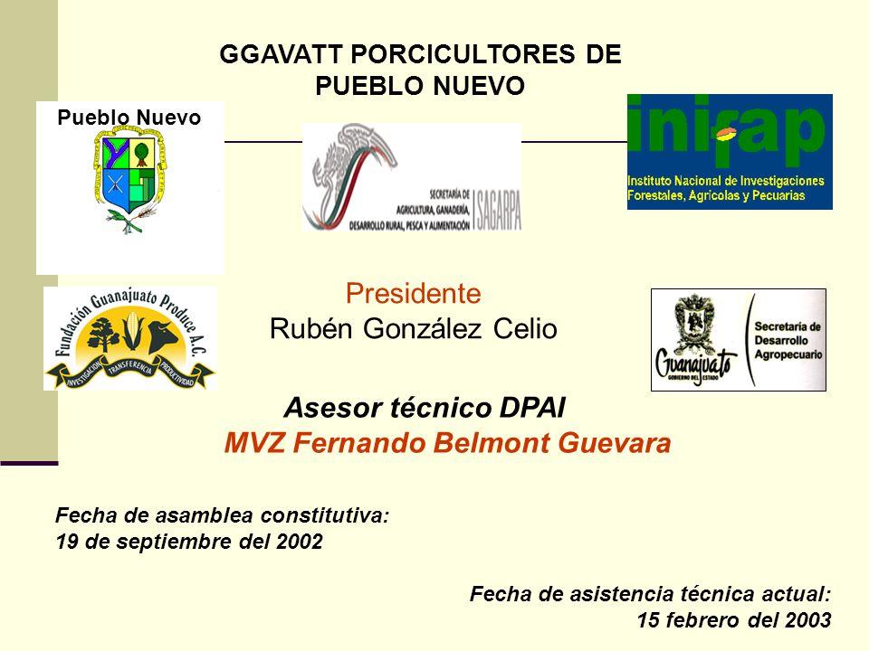 GGAVATT PORCICULTORES DE MVZ Fernando Belmont Guevara