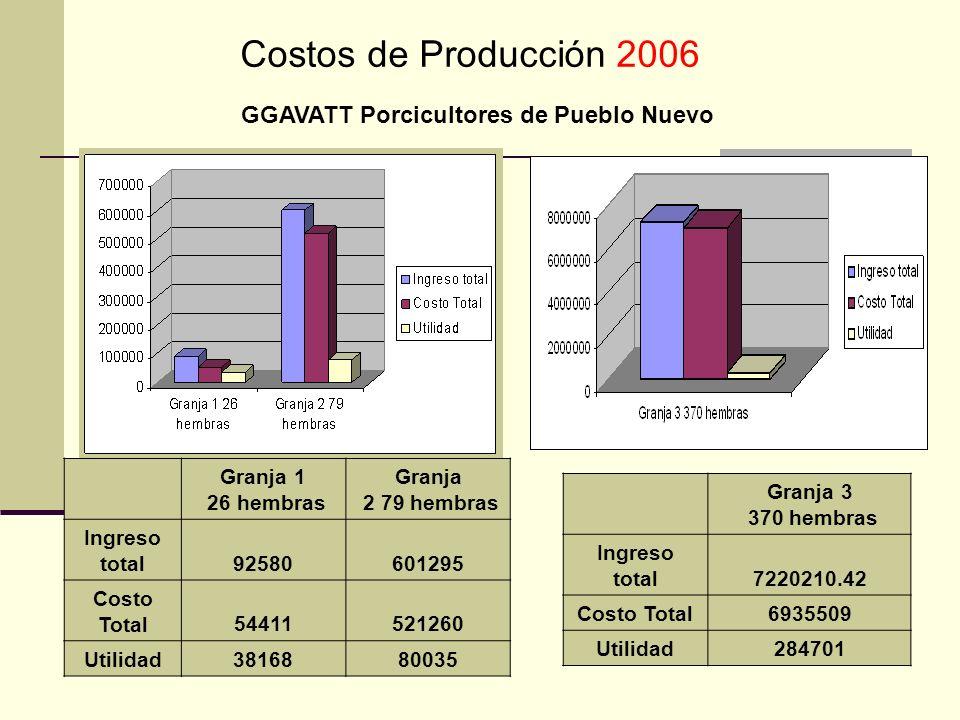Costos de Producción 2006 GGAVATT Porcicultores de Pueblo Nuevo