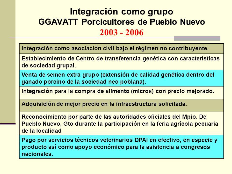 Integración como grupo GGAVATT Porcicultores de Pueblo Nuevo 2003 - 2006