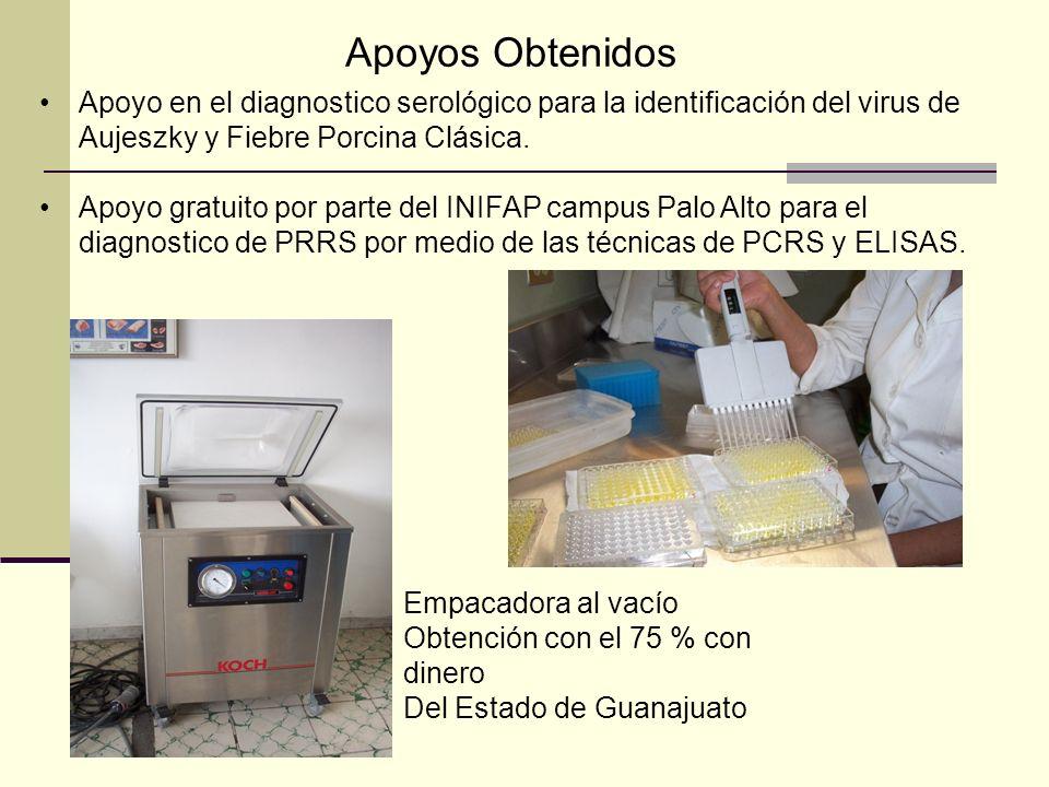 Apoyos Obtenidos Apoyo en el diagnostico serológico para la identificación del virus de Aujeszky y Fiebre Porcina Clásica.