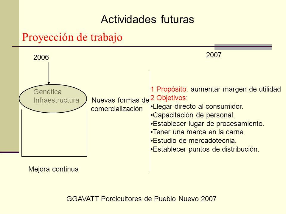 Proyección de trabajo Actividades futuras 2007 2006 Genética