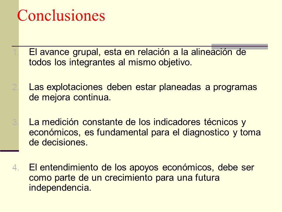 Conclusiones El avance grupal, esta en relación a la alineación de todos los integrantes al mismo objetivo.