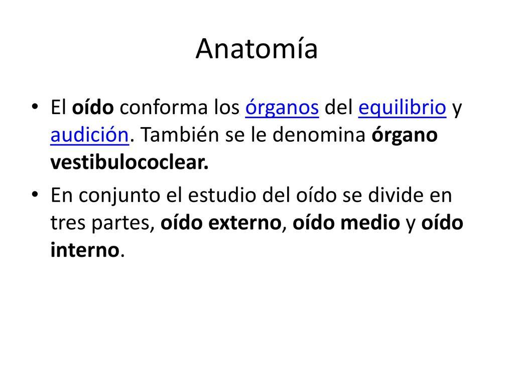 Increíble Anatomía De Un Tambor Patrón - Imágenes de Anatomía Humana ...