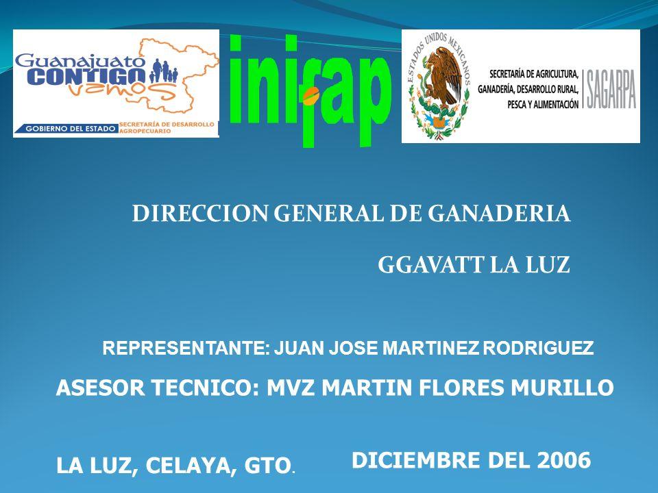 DIRECCION GENERAL DE GANADERIA GGAVATT LA LUZ