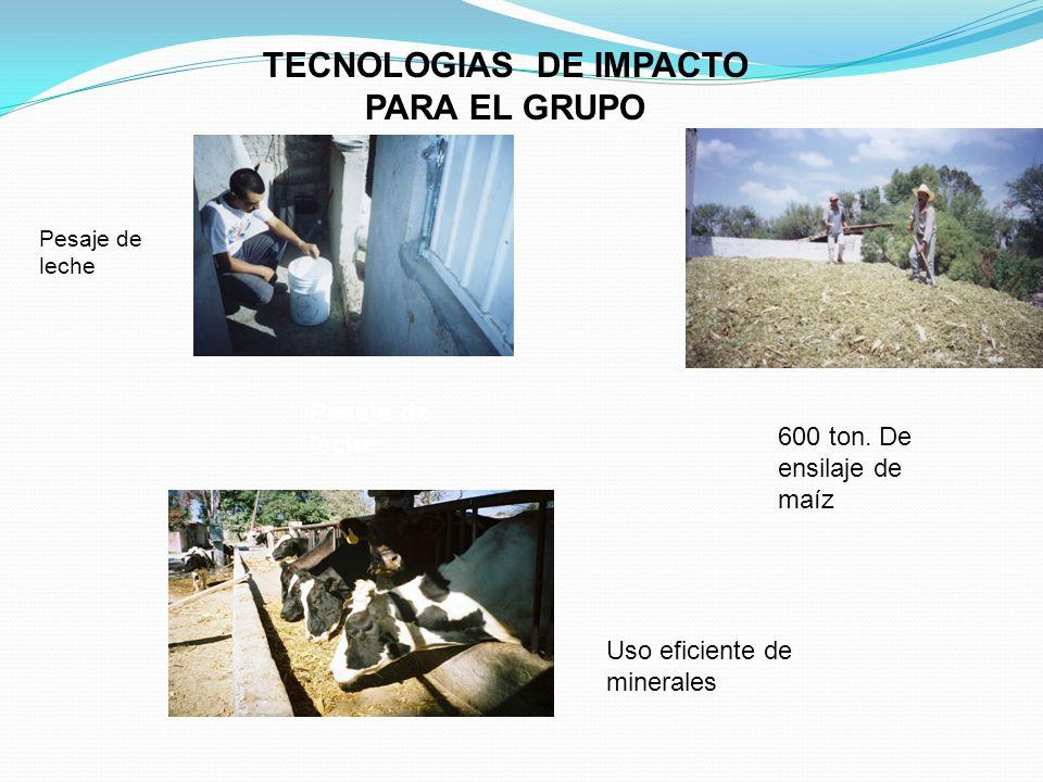 TECNOLOGIAS DE IMPACTO PARA EL GRUPO