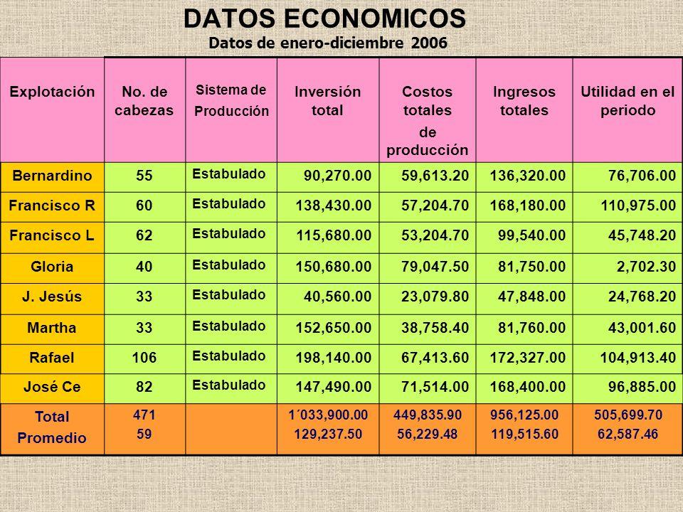 DATOS ECONOMICOS Datos de enero-diciembre 2006 Explotación