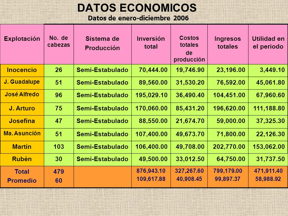DATOS ECONOMICOS Datos de enero-diciembre 2006 Explotación Sistema de