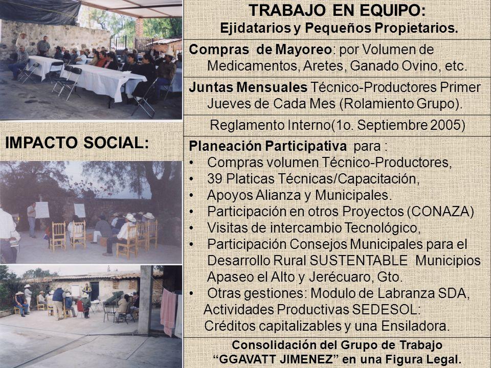 TRABAJO EN EQUIPO: IMPACTO SOCIAL: