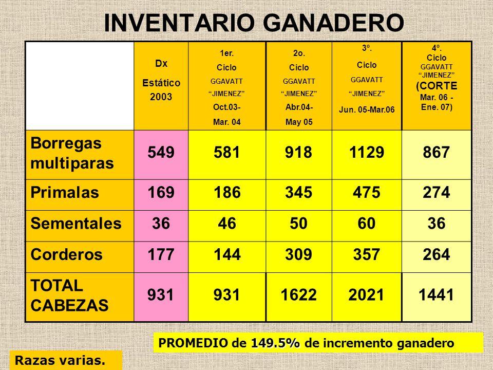INVENTARIO GANADERO Borregas multiparas 549 581 918 1129 867 Primalas
