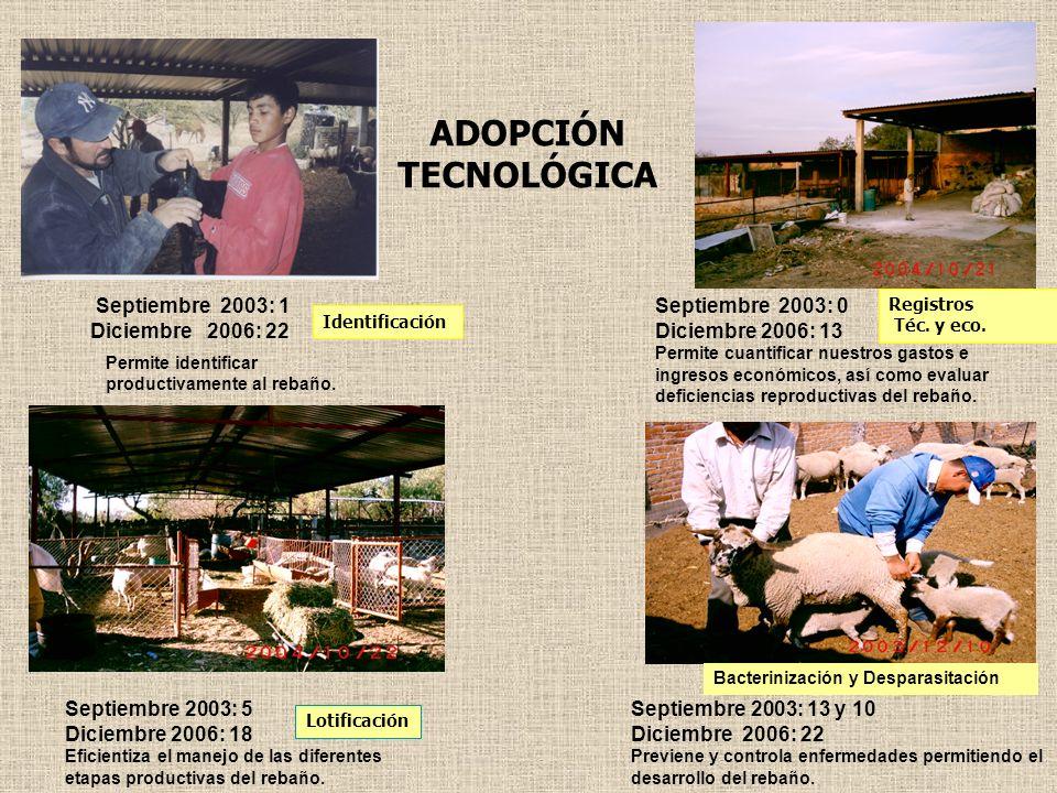ADOPCIÓN TECNOLÓGICA Septiembre 2003: 1 Diciembre 2006: 22
