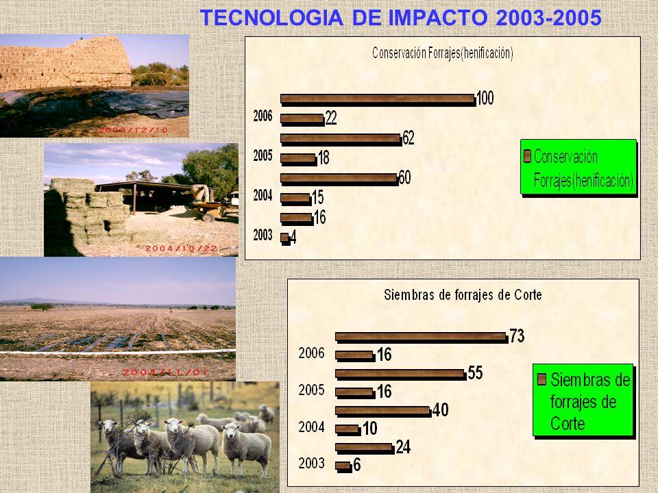 TECNOLOGIA DE IMPACTO 2003-2005