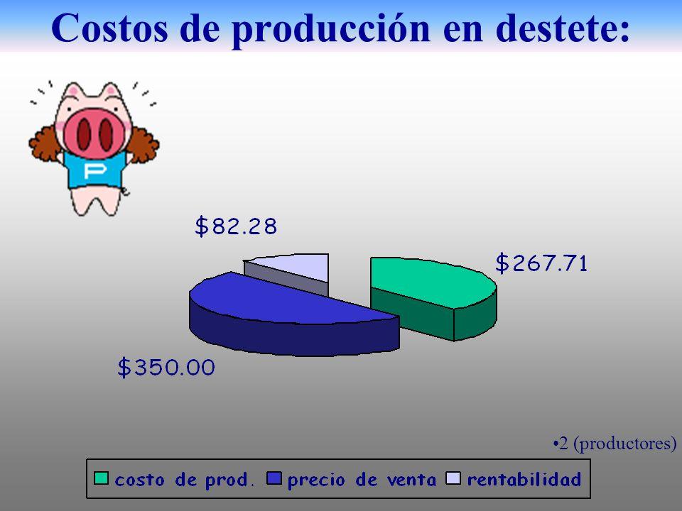 Costos de producción en destete: