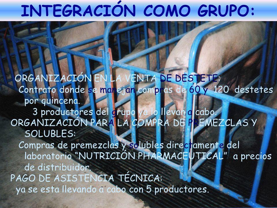 INTEGRACIÓN COMO GRUPO: